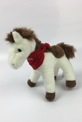 Arrow Head a White Pony with Brown Spots
